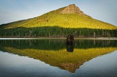 Rattlesnake Lake Washington Lakes, Mountains, Nature, Travel, Naturaleza, Trips, Traveling, Nature Illustration, Tourism
