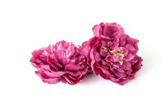 Beautiful rustic coral rose 4 inches silk flower artificial clearance was 375 medium raspberry purple peony 45 inches silk flower artificial flower item 0736 mightylinksfo