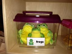 Pet Shop Dramatic Play for Preschoolers http://www.thoughtfulspotdaycare.blogspot.com