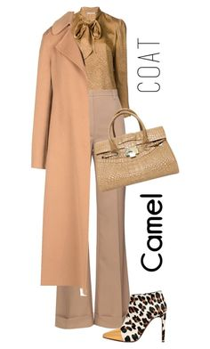 """Untitled #622"" by amchavesj-1 ❤ liked on Polyvore featuring Yves Saint Laurent, Nina Ricci, Marni, Ermanno Scervino, Jimmy Choo and camelcoat"