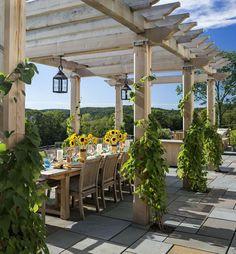 pergola en bois massif, sol dallage de pierre, plantes grimpantes et table à manger en bois