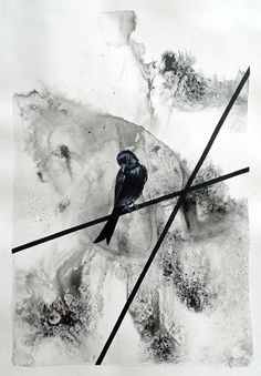 Available for sale online from StateoftheART, Drongo by Liffey Joy, mixed media bird painting on paper size 42 x unframed. Figurative Art, Online Art Gallery, Paper Art, My Arts, African, Joy, Abstract, Artist, Painting