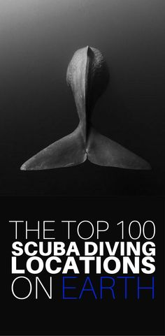 If you are looking for a list of the very best diving in the world, look no further! We have compiled the top 100 scuba diving locations on Earth, and each one is waiting for you to visit and explore. Click to see the whole list for the locations of the best scuba diving in the world!