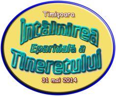 Sigla IETC - Timișoara, 31 mai 2014