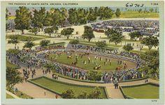 The paddock at Santa Anita, Arcadia, California | Flickr - Photo Sharing!