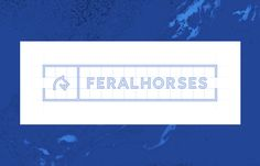 Feral Horses - Brand Identity & Corporate Design on Behance