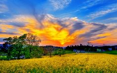 Beautiful Pictures of Spring Scenery | Location Southern California, United States of America, Planet Earth