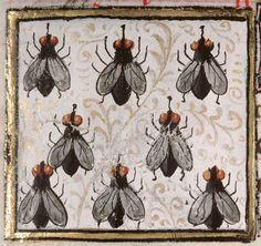 flies Bartholomeus Anglicus, 'Livre des propriétés des choses' (French translation of Jean Corbechon), Paris 1447 Amiens, Bibliothèque municipale, ms. 399, fol. 144r