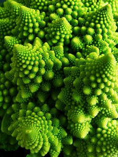 The fractal geometry in this cauliflower is beautifully mesmerizing. Fractals occur everywhere in nature, and are defined by smaller and smaller parts that continue to have the same character as the whole. Art Fractal, Fractal Geometry, Sacred Geometry, Nature Geometry, Patterns In Nature, Textures Patterns, Chou Romanesco, Romanesco Broccoli, Brocolli