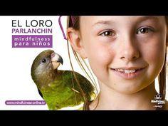 AFIRMACIONES positivas para NIÑOS: el LORO parlanchin   Meditacion niños   Mindfulness Online - YouTube