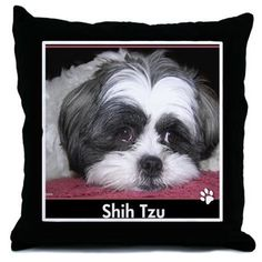 Shih Tzu Dog Photo Throw Pillows on CafePress.com - Shih Tzu Dog Photograph. Black and white shih tzu laying on a pink blanket.