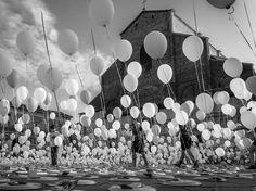Las Mejores Fotografías del Mundo: Notables fotografias