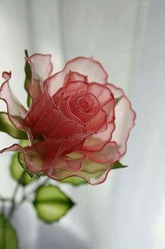 Wood glue flowers