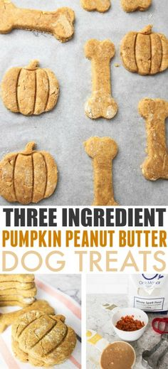 These pumpkin peanut butter, 3 ingredient dog treats are a fun, healthy way to show your furry friends how much you care! Dog Cookie Recipes, Easy Dog Treat Recipes, Homemade Dog Cookies, Dog Biscuit Recipes, Homemade Dog Food, Dog Food Recipes, Pumpkin Dog Treats Homemade, Homemade Dog Biscuits, Pumpkin Dog Biscuits