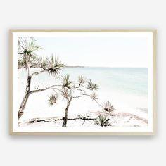 Add an impact on any wall with our Byron Views Photo wall decor art print. Beach Artwork, Canvas Artwork, Framed Art Prints, Poster Prints, Canvas Prints, Mdf Frame, Canvas Frame, Stradbroke Island, Photo Wall Decor