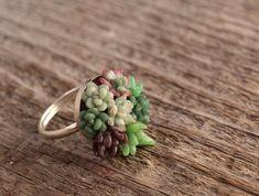 Tiny Succulent Garden Ring