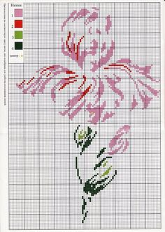Very pretty iris - chart in original colors - page 2 of 2
