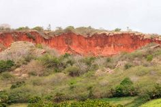 Madagascar's Red Soil