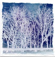 CC099 Tree Line Cover a Card