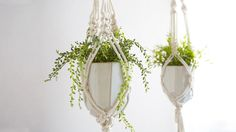 Learn how to create the most iconic of all macramé projects: the Plant Hanger. Emily Katz shows you how to create a hanger out of cotton rope tied into simple square knots and half square knots. This project is totally customizable and can work with planters of any size. Emily will show you...