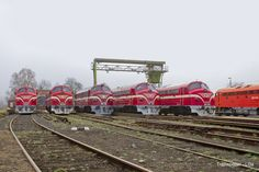 MÁV M61 017 / TapolcaVasutallomas — Trainspo