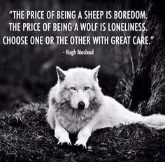 Choose your path wisely!