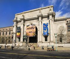 American Museum of Natural History review in New York  #NYC