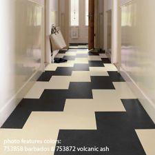 "Forbo Marmoleum Click 2 Plank 12"" x 36"" Vinyl Flooring"