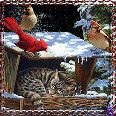 winter - Page 35 Merry Christmas And Happy New Year, Christmas Art, Winter Christmas, Winter Szenen, I Love Winter, Animated Christmas Pictures, Snow Pictures, Snow Scenes, Winter Pictures