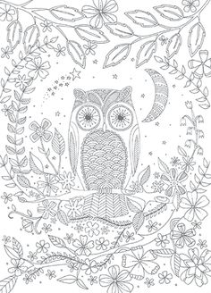 Coloring OWL Adult ColoringColoring BooksOwlVintage BooksColoring PagesOwls