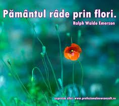 Imagini pentru citate despre pamant Ralph Waldo Emerson, Spiritual Quotes, Cool Words, Meditation, Spirituality, Awesome, Summer, Beauty, Beleza