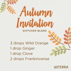 Autumn diffuser blend
