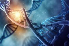 19 Pieces Of Non-Human DNA Found In Human Genome.   IFLScience Search Health and Medicine 19 Pieces Of Non-Human DNA Found In Human Genome.  Eight percent of your DNA is alien, in that it's made up of non-human, viral fragments.
