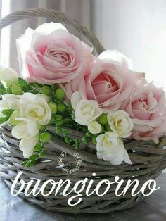 Floral Arrangement - Beautiful pink roses and white flowers in a basket. Love Rose, My Flower, Pretty Flowers, Fresh Flowers, Flower Basket, Rose Basket, Deco Floral, Arte Floral, Pink Roses