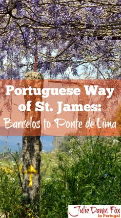 Central Portuguese Way of St. James. Following the ancient pigrim route, the Camino de Santiago, between two medieval towns in the Minho region of northern Portugal, Barcelos and Ponte de Lima. Click to find out how beautiful it is