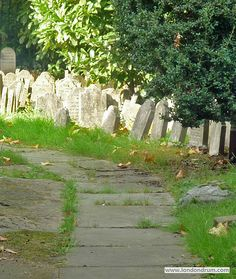 This is the spooky Pet Cemetery inside Hyde Park, containing hundreds of tiny little headstones for dead cats and dogs