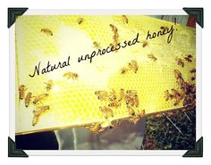Natural unprocessed honey  Natures Select Orchard