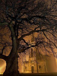 Foggy Night, Straffan,Ireland