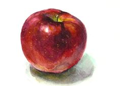 that's one beautiful apple. Watercolor Pictures, Watercolor Print, Watercolor Paintings, Watercolors, Apple Painting, Fruit Painting, Vintage Botanical Prints, Botanical Art, Vegetable Illustration