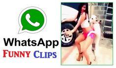कॉमेडी लड़कियों का व्हाट्सप्प वीडियो कलेक्शन 2016 Funny Whatsapp Videos, Funny Clips, Latest Video, Viral Videos, Youtube, Youtubers, Youtube Movies