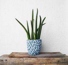 Ein Blumentopf mit Pullover - a flower pot with sweater