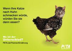 http://www.peta.de/themen/Ern%C3%A4hrung