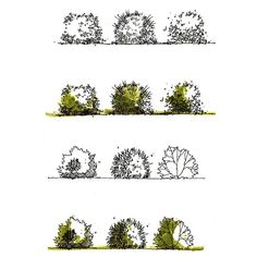 Landscape sketch tutorial 31 ideas - Image 7 of 24 Landscape Architecture Drawing, Landscape Sketch, Landscape Drawings, Landscape Plans, Cool Landscapes, Landscape Design, Architecture Sketches, Plant Sketches, Tree Sketches