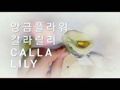 앙금플라워 애플블라썸 꽃짜기 (투톤 글라데이션기법 ) - YouTube