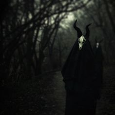 dustoncrowns:    Moar cloaks in forests