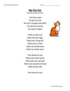 Reading Comprehension Worksheet - My Pet Cat