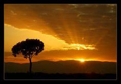 Gorgeous Sunrise