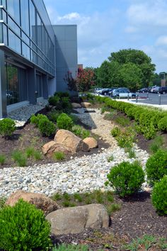 Elegant Commercial rain garden to manage stormwater Located at Country View in Malvern PA