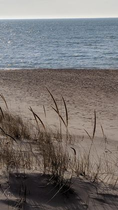 The Dunes, Beach, Water, Outdoor, Gripe Water, Outdoors, Seaside, The Great Outdoors, Aqua