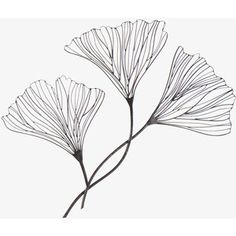 Metal Floral Wire wall decor These are Ginko leaves - my very favorite.